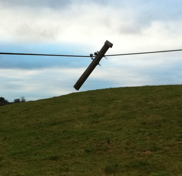 Telegraph Pole of the Month, March 2011